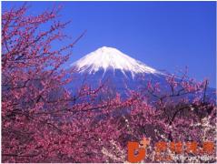 赴日体检:为何日本的医疗水平占世界榜首?