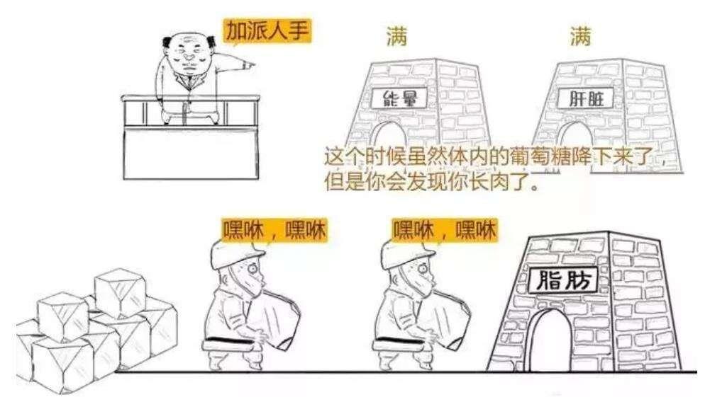 日本干细胞治疗|为什么会得糖尿病?图解糖尿病发病机理及预防