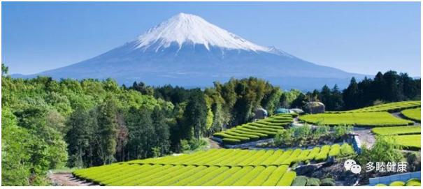 日本冲绳5天4晚健康之旅 冬季带父母避寒绝佳之选