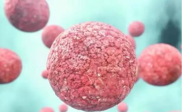 【免疫细胞案例】 身患癌症 九死一生 方知健康可贵