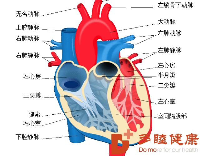 榊原医院|心血管事件的风险增高,对照看看你的患病几率