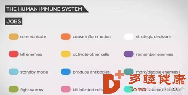 免疫细胞治疗|关于免疫细胞,看完这篇你就全懂了