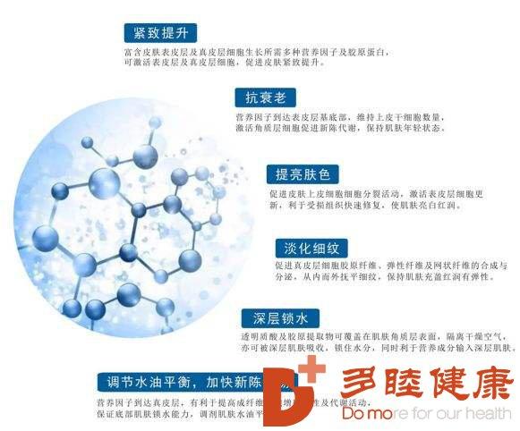 """日本干细胞-干细胞抑制衰老""""长生不老""""?想去试试!"""