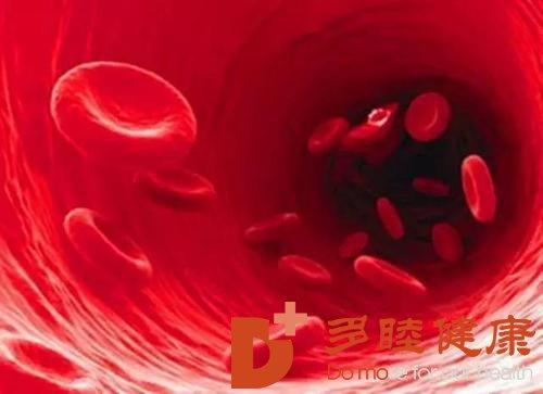 多睦健康告诉您:如何选择专业的日本血液净化机构