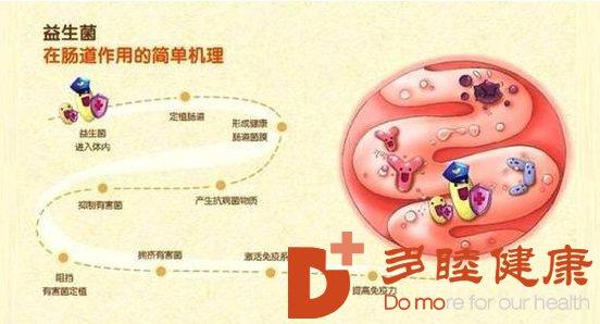 血液净化:益生菌仅仅对消化有好处?错!它们甚至可以治疗牛皮癣等皮肤病