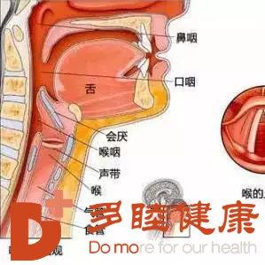 日本喉癌治疗:喉癌干细胞进展概况
