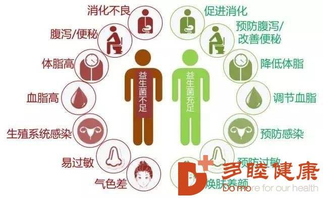 血液净化:益生菌只能帮助消化?还有六大健康功能!四大因素最有害