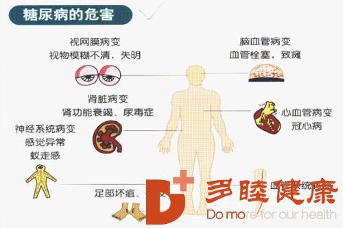 为什么糖尿病容易引起血管并发症?高血糖触发的蛋白可能是关键