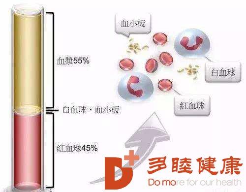 血液净化:血小板增多症如何治疗?