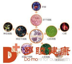 干细胞治疗给几十种自身免疫性疾病的新希望!