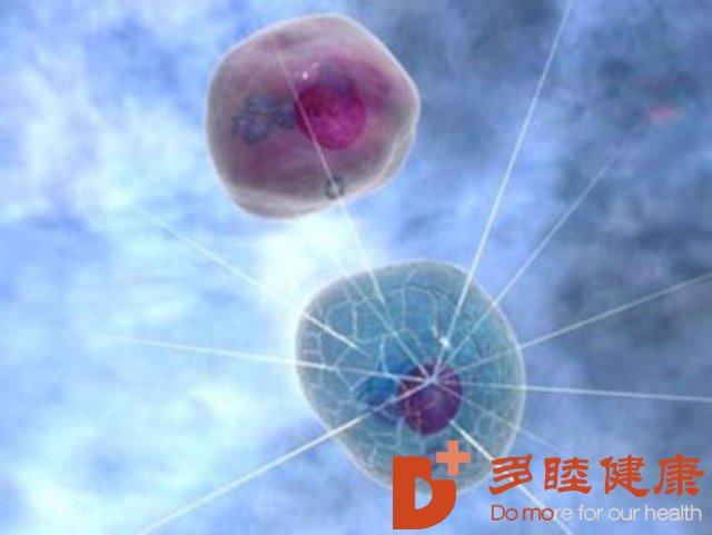 NK细胞掀起免疫抗癌抗衰新革命!您体内的NK细胞够用没?