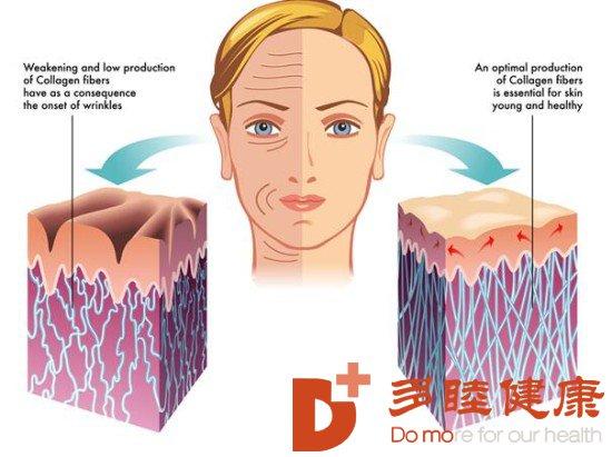 干细胞抗衰老:逆龄重塑年轻,干细胞抗衰疗法
