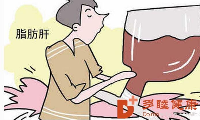 日本干细胞:帮助你治疗脂肪肝