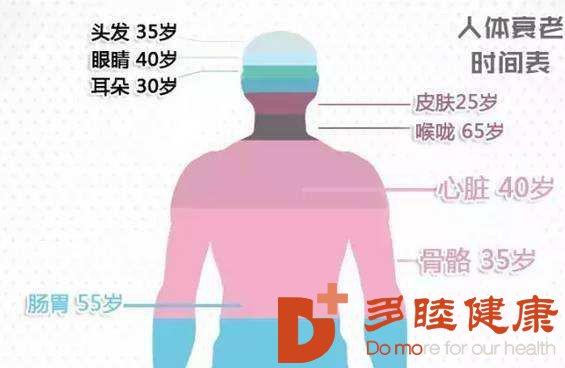 人体器官什么时候开始衰老?干细胞帮助这么大!