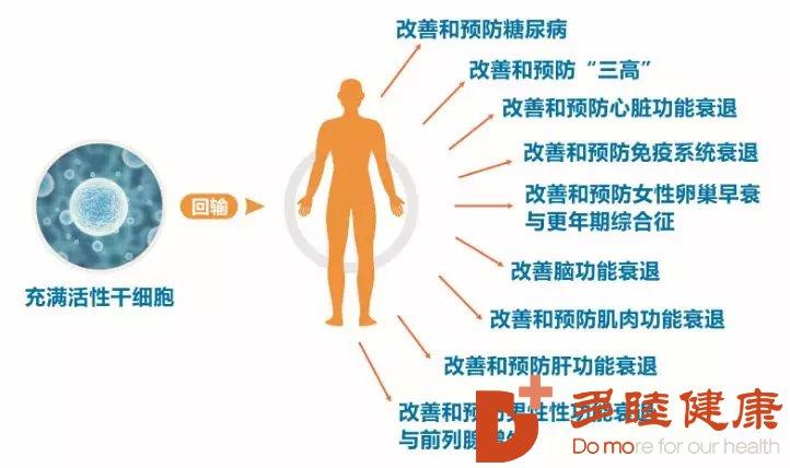 干细胞疗法对抗衰老及治疗各种疾病的优势