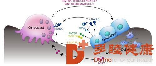 """引起皮肤病症的原因多态,干细胞各种""""症""""状修复"""