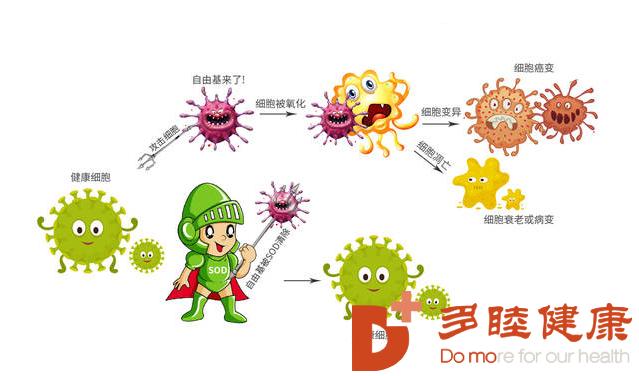 自身免疫性疾病,间充质干细胞带给新希望!