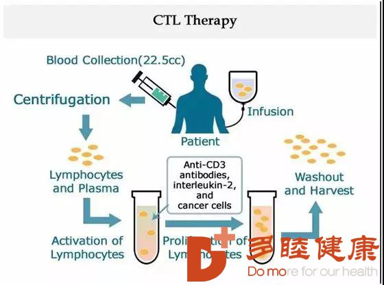 日本细胞疗法帮助癌患者攻克癌症的复发和转移