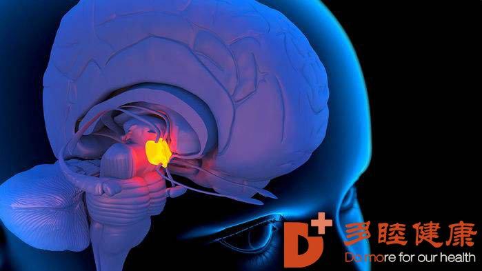 一个新的突破,干细胞帮您修复受损大脑
