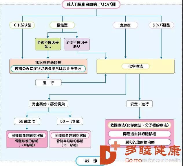 日本泳坛天才少女患上白血病,白血病还是不治之症?