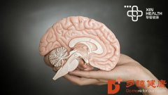 脑卒中很可怕,我们应该如何预防和治疗?