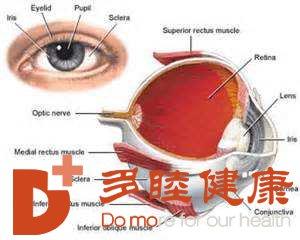 干细胞治疗:盲性眼病干细胞的出现能改变什么