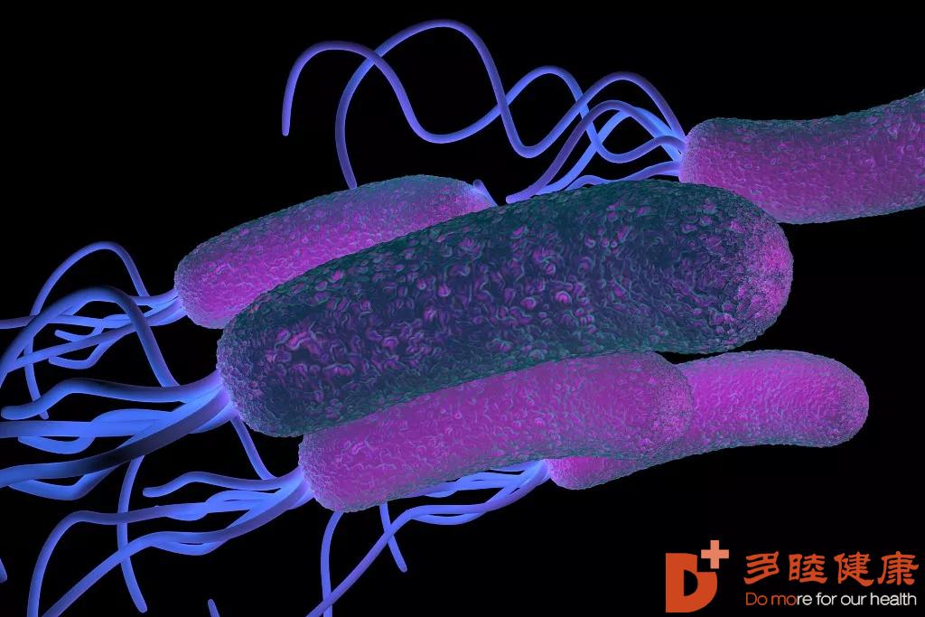 干细胞治疗:治疗幽门螺杆菌期间,一定要注意这8个问题