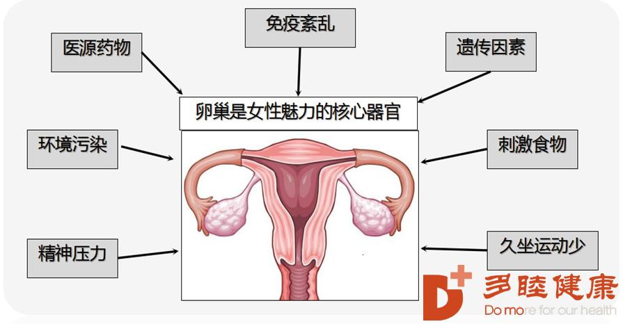 """干细胞治疗:如何看待""""干细胞治疗卵巢早衰""""?"""