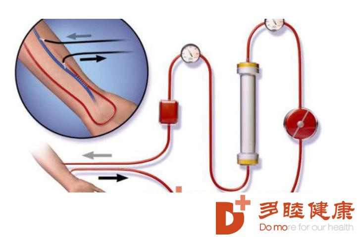 血液净化:血脂不断升高,血液净化一招解决身体毛病
