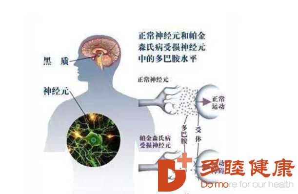干细胞治疗:细胞再生疗法,干细胞开创再生医学