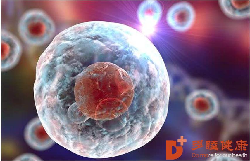 干细胞治疗:干细胞对治疗肝硬化有明显改善,修复人体坏死细胞