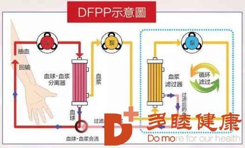 血液净化:日本医疗级预防血液净化,到底是什么呢?