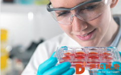 干细胞治疗:关于干细胞治疗糖尿病