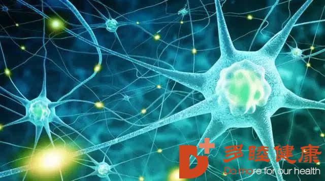 干细胞治疗:治疗胰腺内外分泌功能障碍疾病