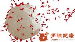 日本免疫细胞治疗:日本细胞免疫治疗癌症的进展和临床应用