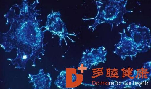 日本看病:NK免疫细胞抗衰老的适宜人群