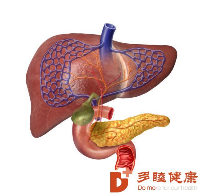 日本先端医疗|干细胞治疗肝硬化新方法