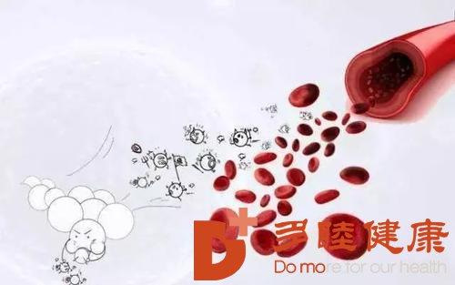日本血液净化:干净的血液是身体健康的基础
