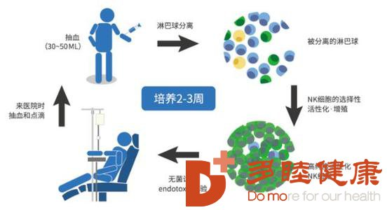 日本的免疫疗法为何在世界上名列前茅?