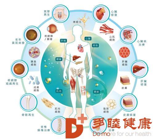 日本干细胞:修复卵巢功能留住青春