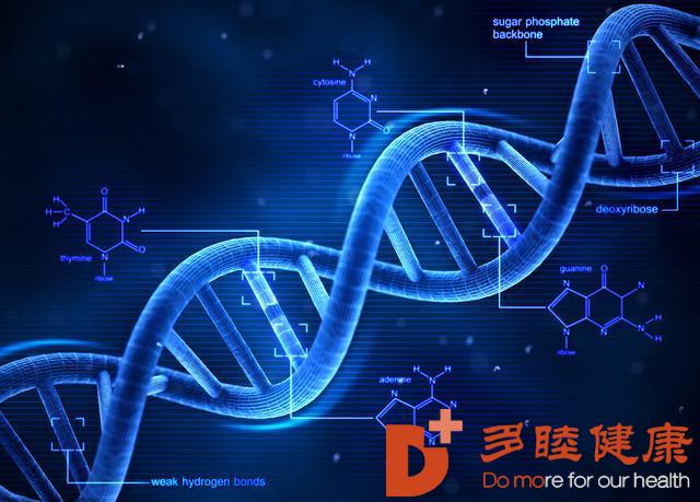 干细胞转变人类衰老状态,健康活到120岁不是梦