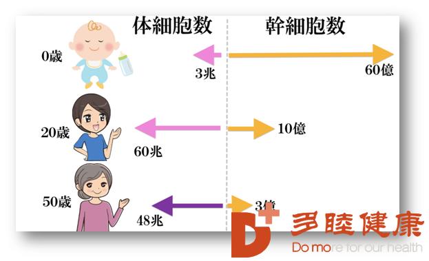 日本干细胞|为什么还要做干细胞治疗?
