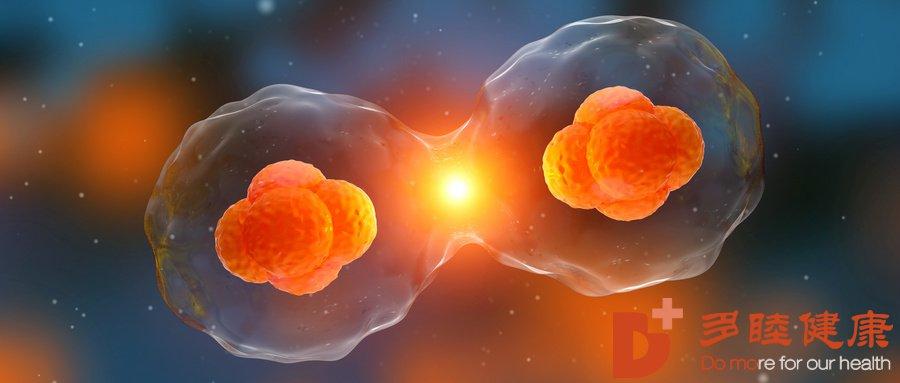 日本干细胞|干细胞技术为自闭症孩童打开心扉不再孤独