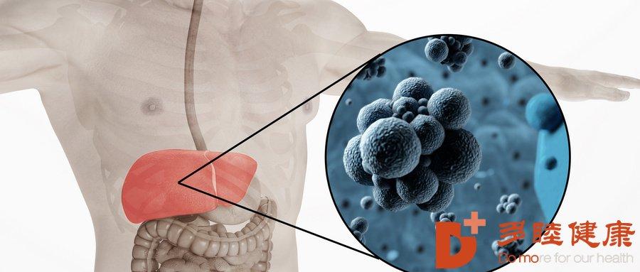 日本干细胞-干细胞移植可分化成肝细胞,为治疗肝硬化带来新方向